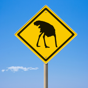 Warning ostrich ahead yellow road sign